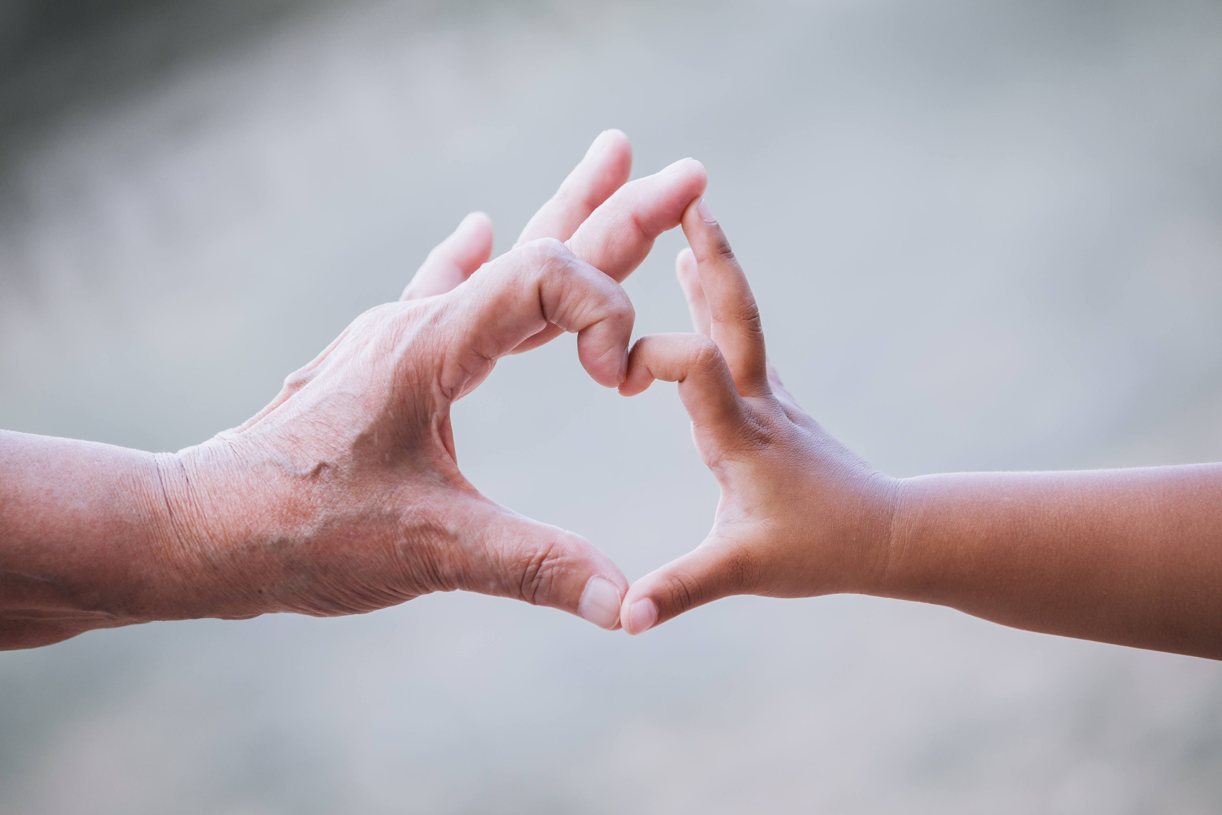 Provide a Lasting Legacy with Planned Giving