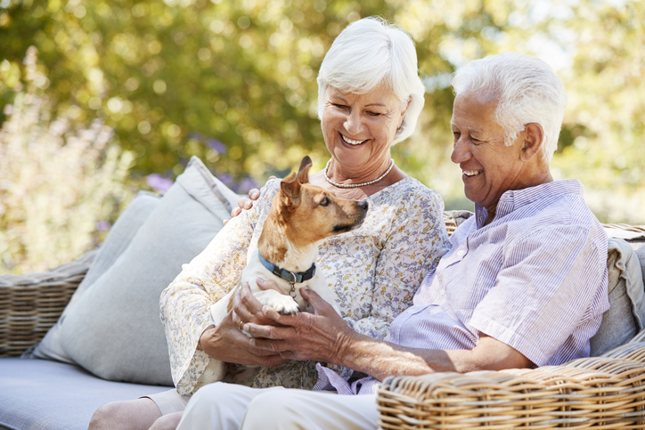 The Physical and Mental Health Benefits of Pet Therapy for Seniors